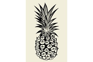 Pineapple fruit Hand drawn