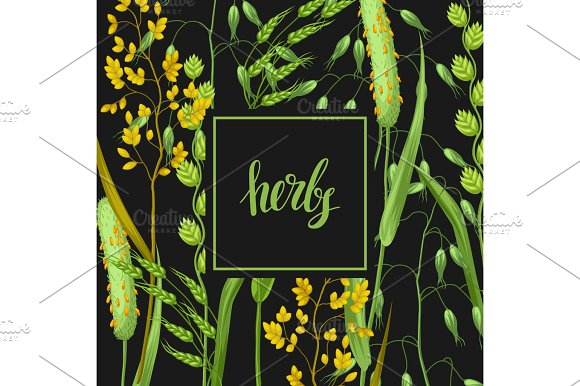 Background With Herbs And Cereal Grass Floral Design Of Meadow Plants