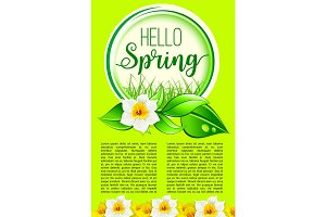 Spring holiday greeting poster of dafodil flowers