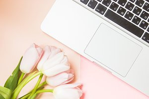 Laptop with Pink Tulips