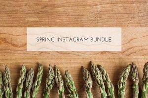 Spring Instagram Bundle