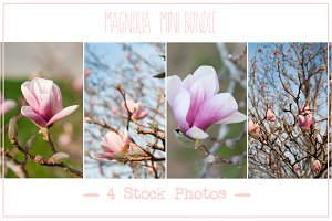 Spring Magnolia | Mini Photo Bundle