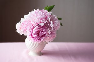 Pink Peonies in vase with copy space