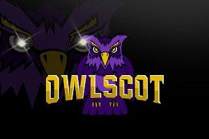 Owl logo team mascot