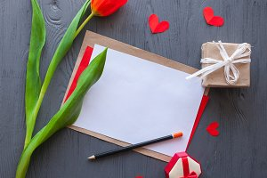 Red tulip and greeting card