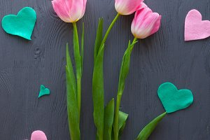 mothers day,pink tulips
