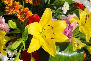 Floral Centerpiece with Lilium