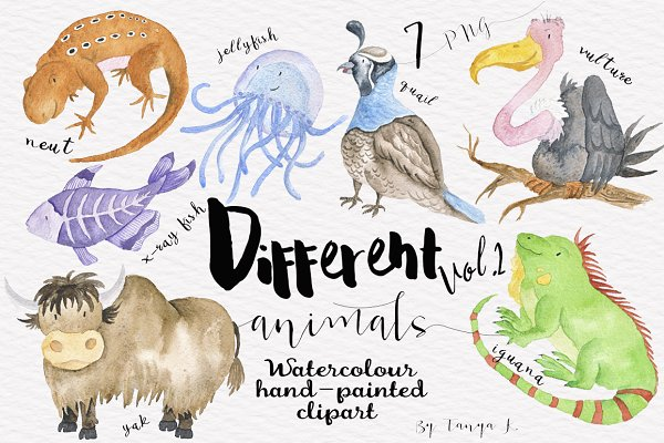 Watercolor Animals clipart