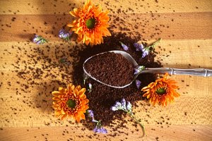 Spoon with Coffee and Flowers