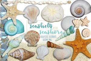 Seashells by the Seashore Elements