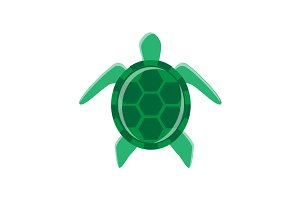 Minimal turtle illustration