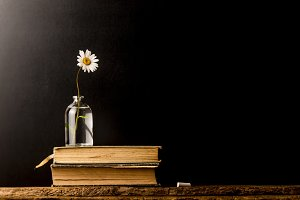 Vintage old books and daisy