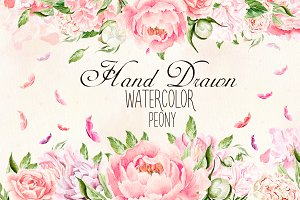 Hand Drawn watercolor Peony