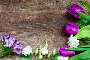 Beautiful purple and white flowers tulips on old wooden background
