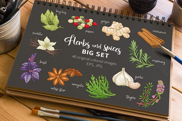 40 Colored Spices And Herbs On Dark