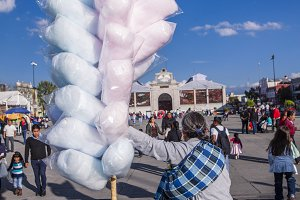 Cotton Candy, Toluca