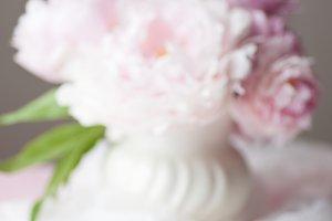 Peonies Blurred Floral Background