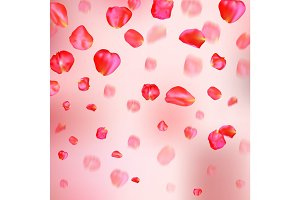A lot of falling red rose petals on pink background.