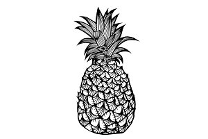 Tropical fruit pineapple.