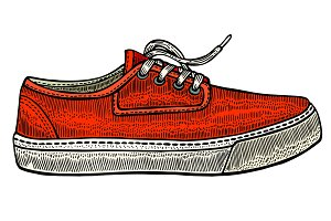 vector modern red sneakers