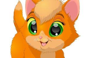 Funny kitten baby