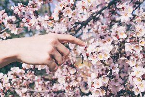 Creation of flowers