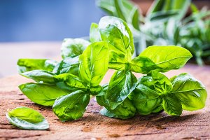 Basil and aromatic herbs.
