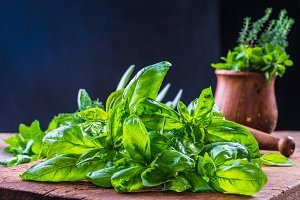 Fresh aromatic herbs.