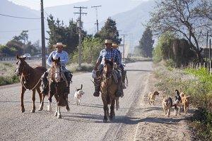 Huasos on his Horses. Chile
