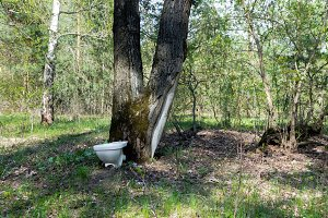 The toilet is in the woods. Urinal in the forest.