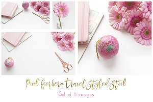 Pink gerberas and globe bundle