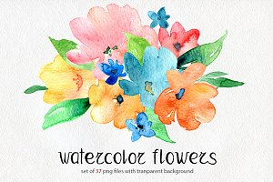Bright watercolor flowers set