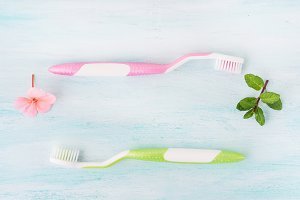 Dental hygiene concept. Toothbrushes, flowers, mint