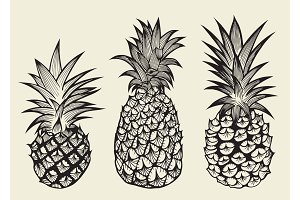 set illustrations of ripe pineapples.