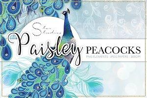 Paisley Peacocks Pack