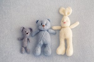 Three soft toy bears