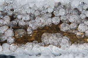 Ice droplets frozen in a dark tree