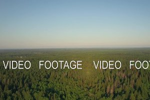 Flying over vast green woods in Russia