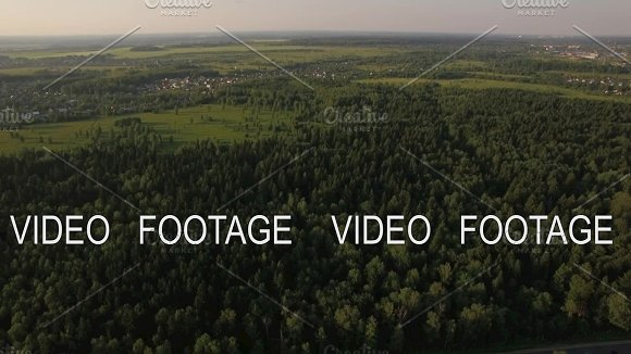 Aerial Flight Above The Huge Green Forest Russia
