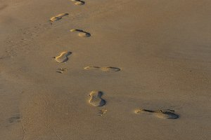Footprints background.