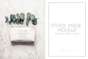 Clutch mockup with eucalyptus.