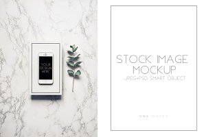 Iphone mockup with eucalyptus.