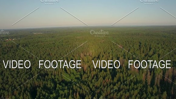 Aerial flight above the huge green forest, Russia