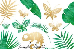 Rainforest & Jungle Clipart Set