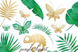 Rainforest & Jungle Clipart Set