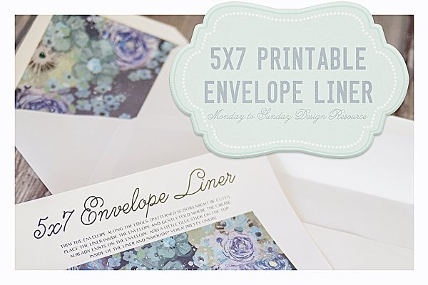 Save 50% 5x7 Handy Envelope Liners