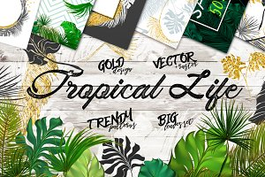 Tropical Life (vector + PSD,PNG)