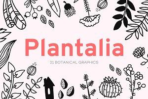 Plantalia - 21 botanical graphics