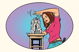 dog grooming, Barber shears pet