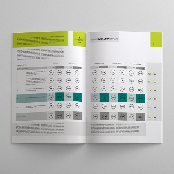 Website Evaluation Template ~ Templates ~ Creative Market
